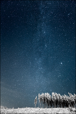 Milky way and the forestry